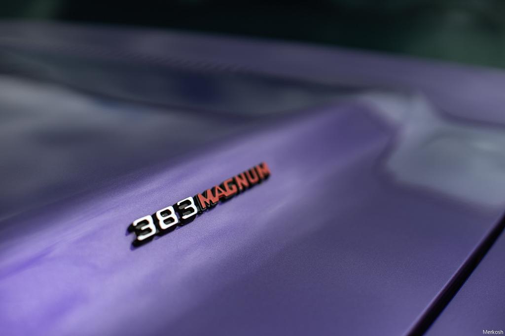 DSC04297
