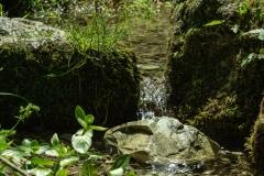 Kleine Quellen
