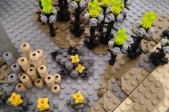 Basaltsäulen und Dornengewächse