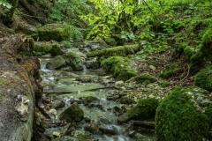 Nun aber: Der Weg zur Falkensteiner Höhle