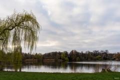 Schaefersee